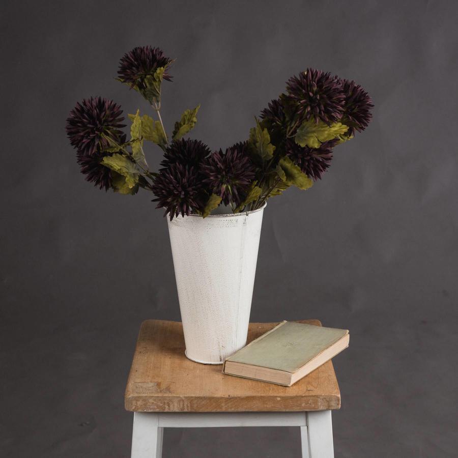 Chocolate Chrysanthemum