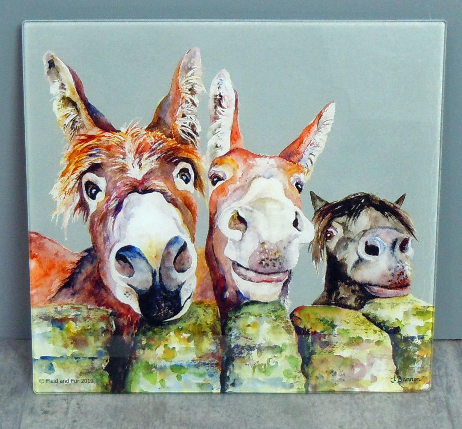 Glass Donkey chopping board, worktop saver