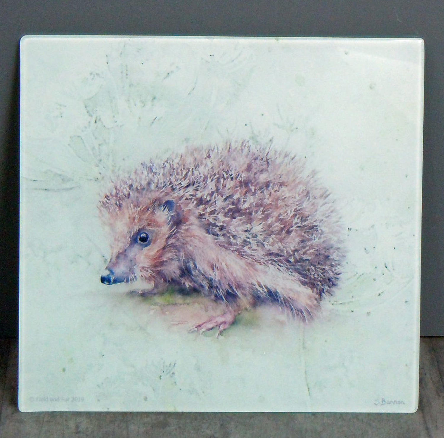 Glass Hedgehog chopping board, worktop saver