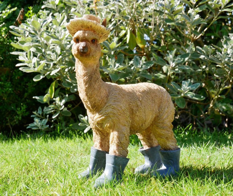 Llama in boots