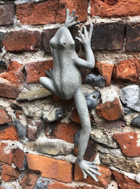 Wall hanging climbing Frog