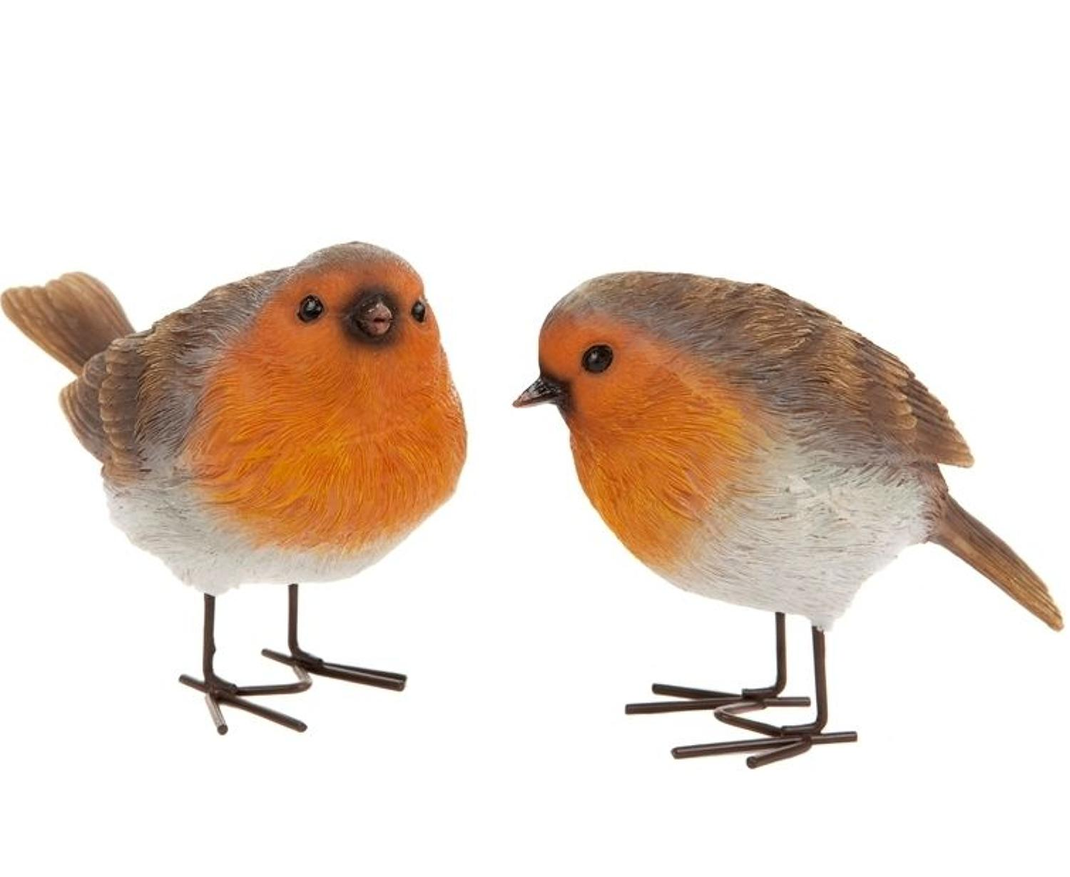 Pair of Robins