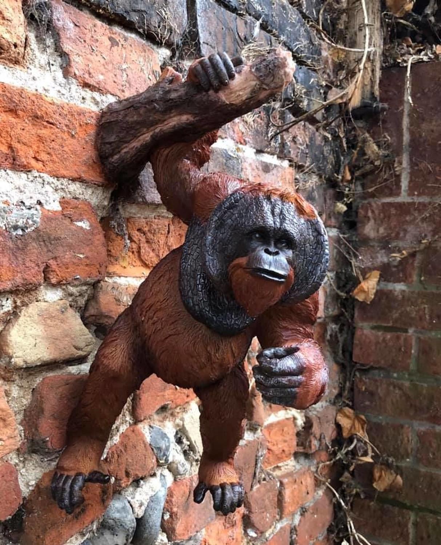 Wall hanging Orangutan
