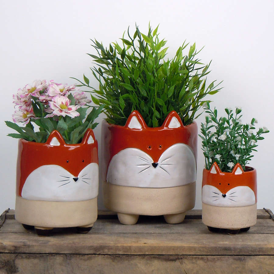 Semi glazed Foxplant pots