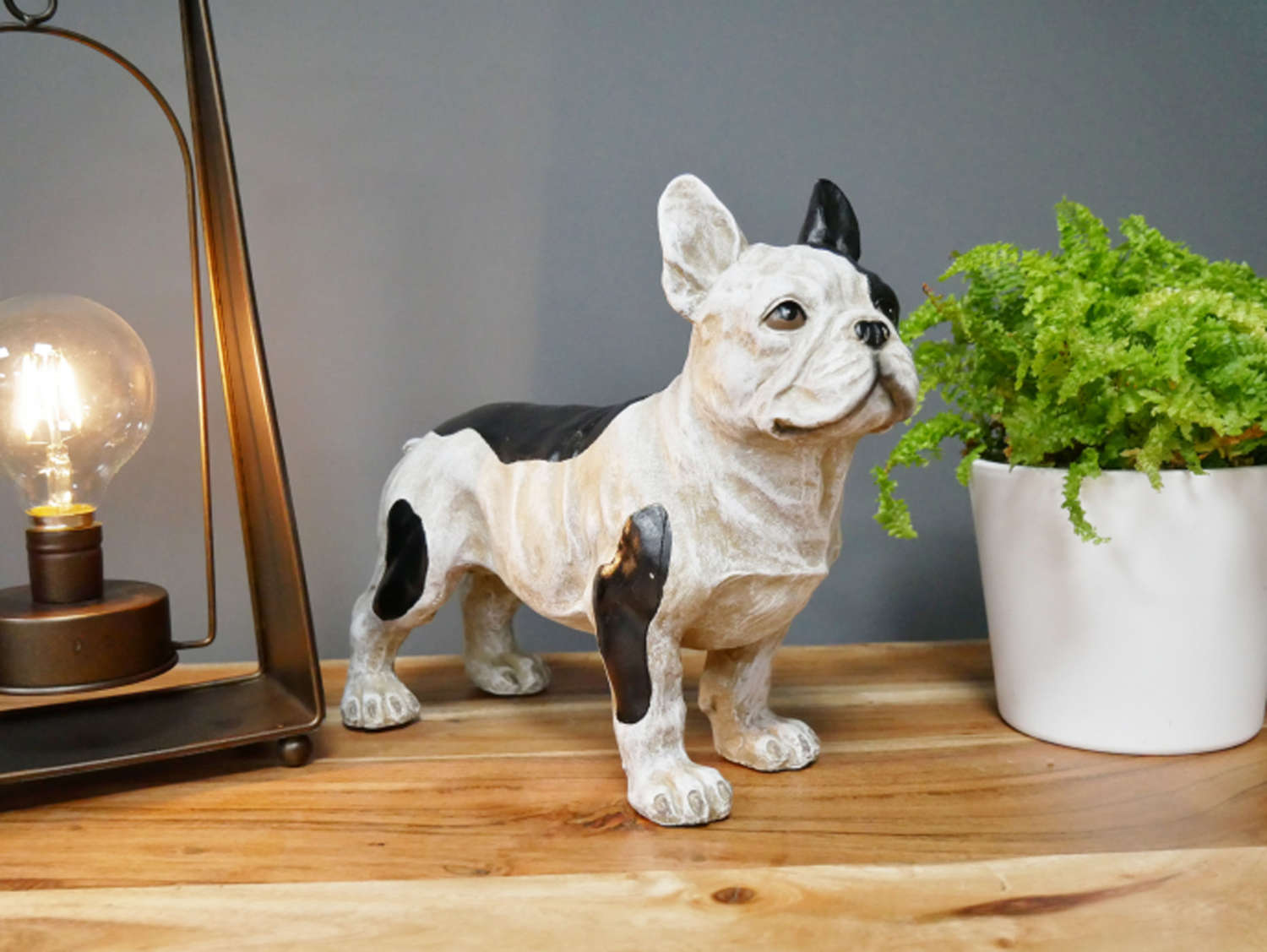 Standing French Bulldog