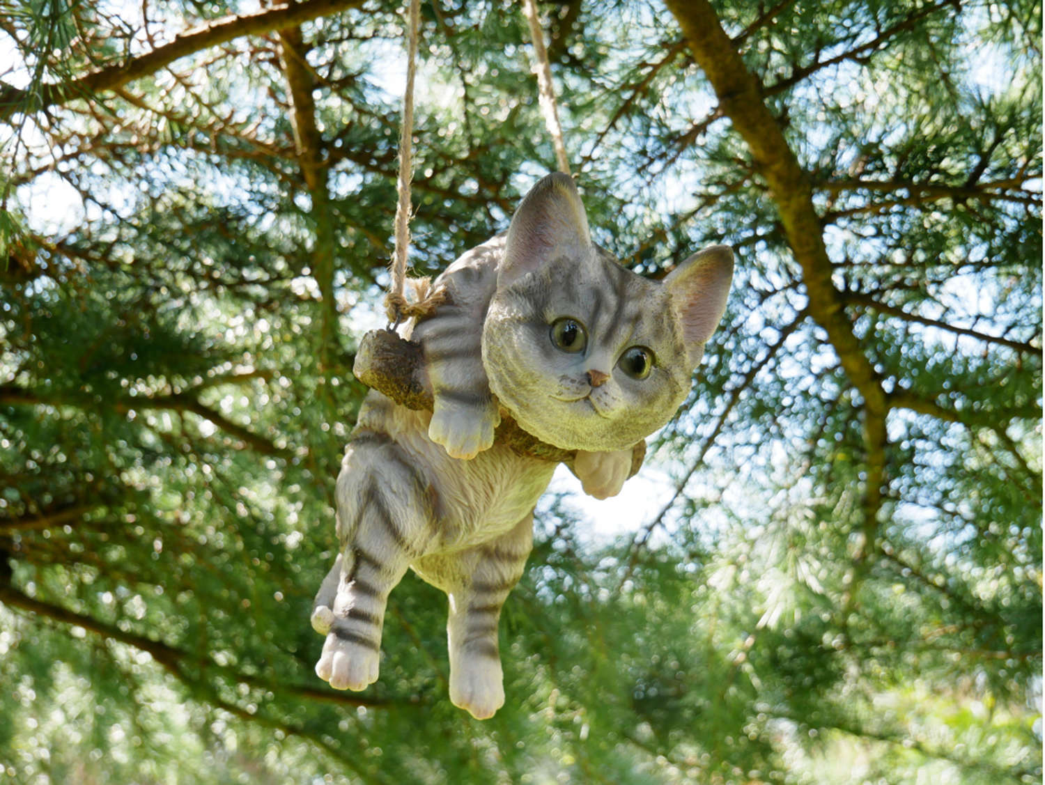 Hanging Cat on a rope swing