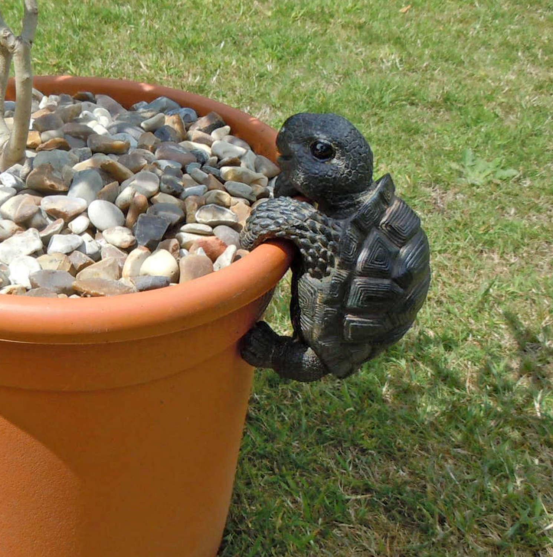 Tortoise pot hanger