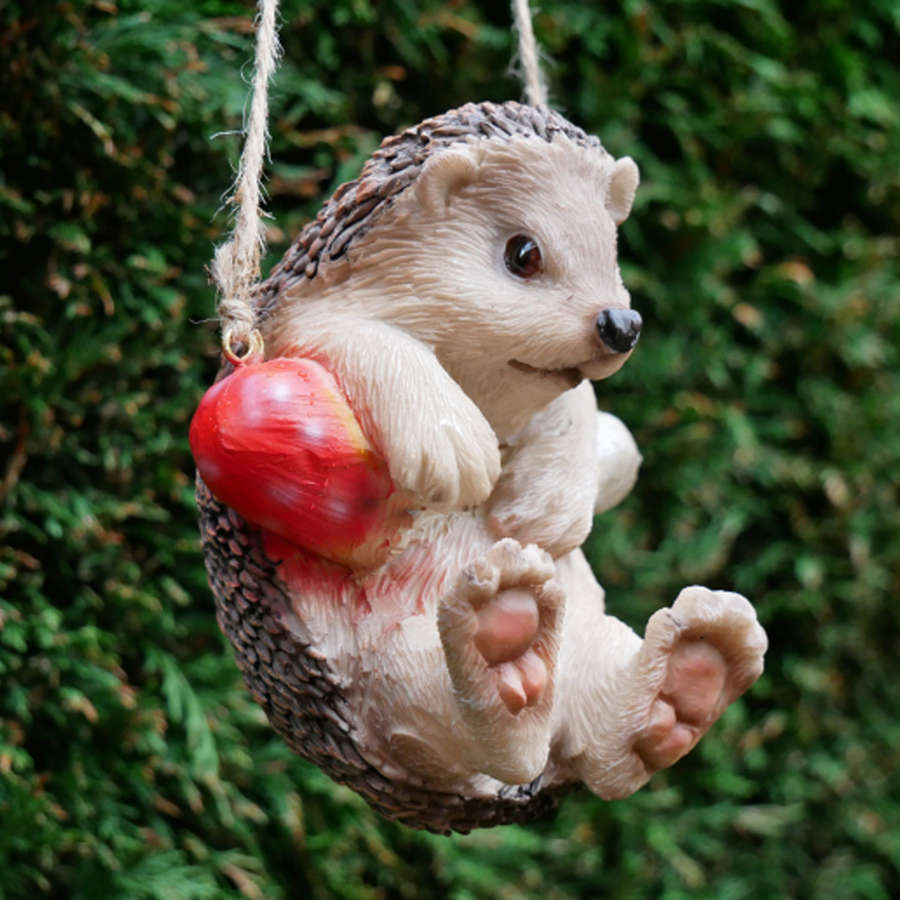 Hanging garden Hedgehog