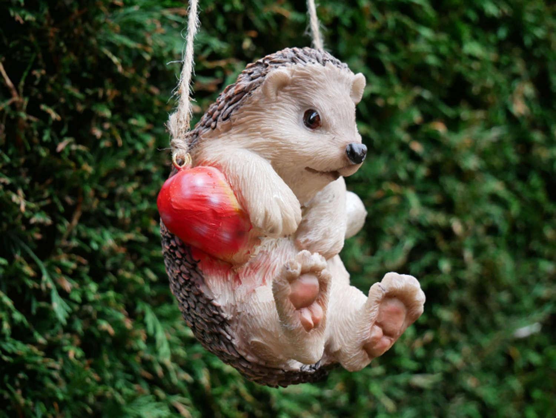 Hanging garden Hedgehog