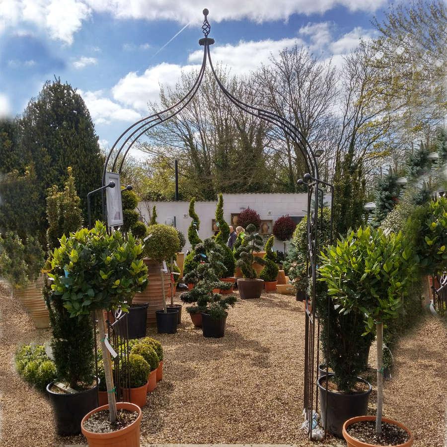 Poppyforge Ogee garden flower Arch manufactured in the UK