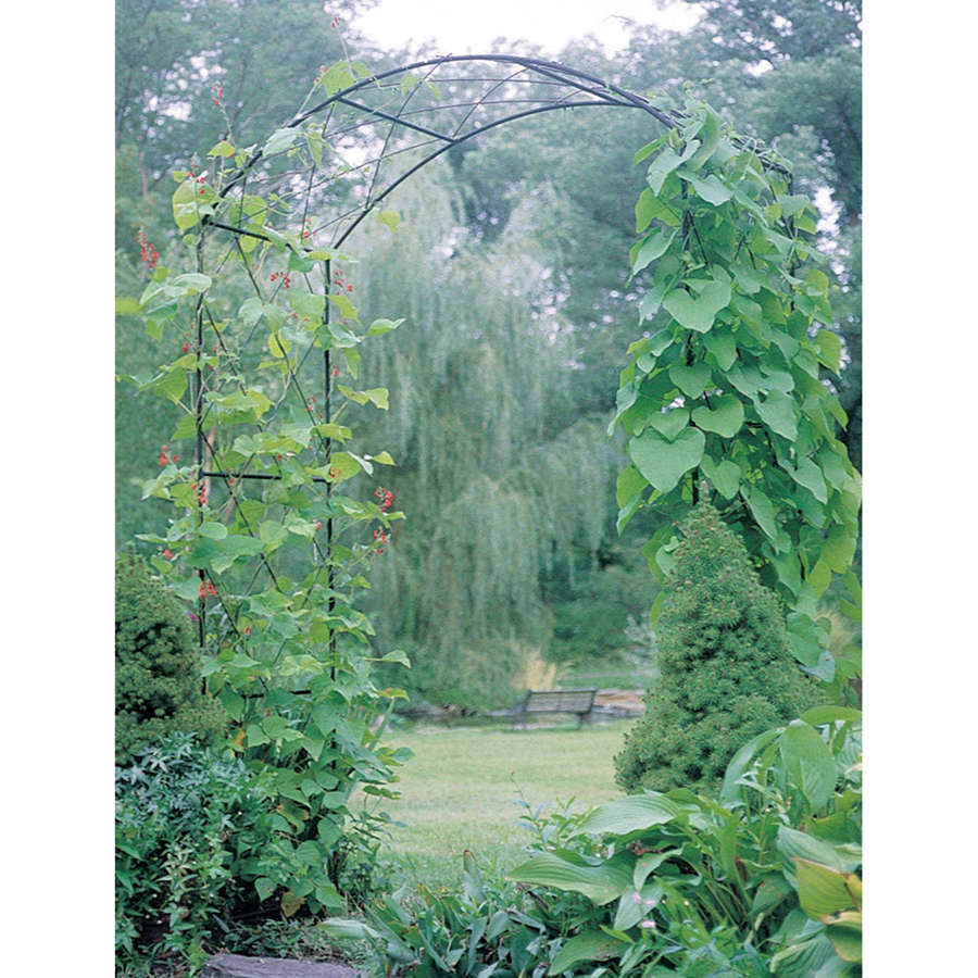 Poppyforge Monet garden Arch manufactured in the UK