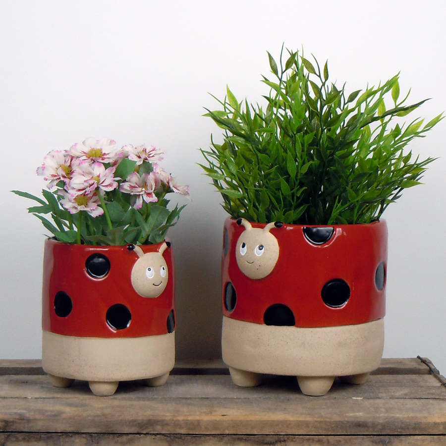 Semi glazed Ladybird plant pots