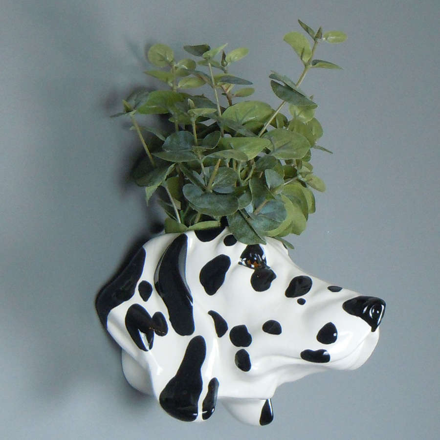 Ceramic Dalmatian head wall planter