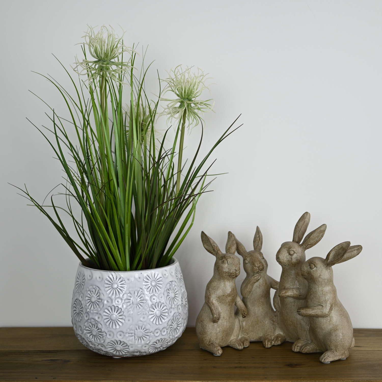 Characterful rabbits quartet