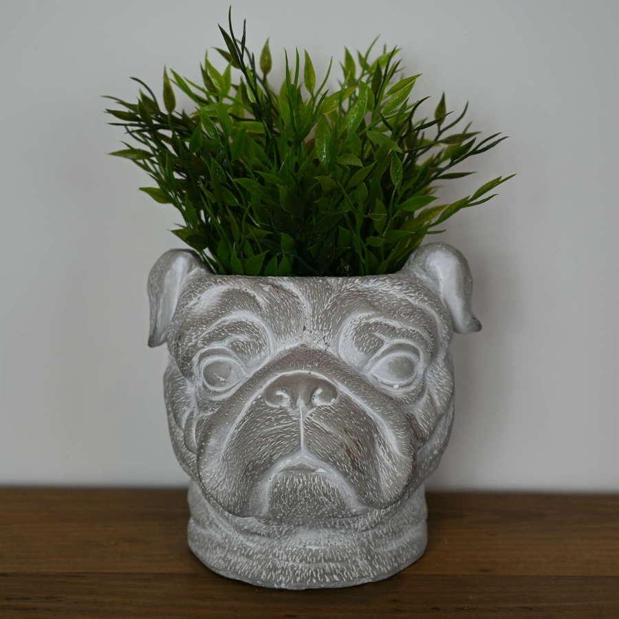 Pug Dog head cement planter