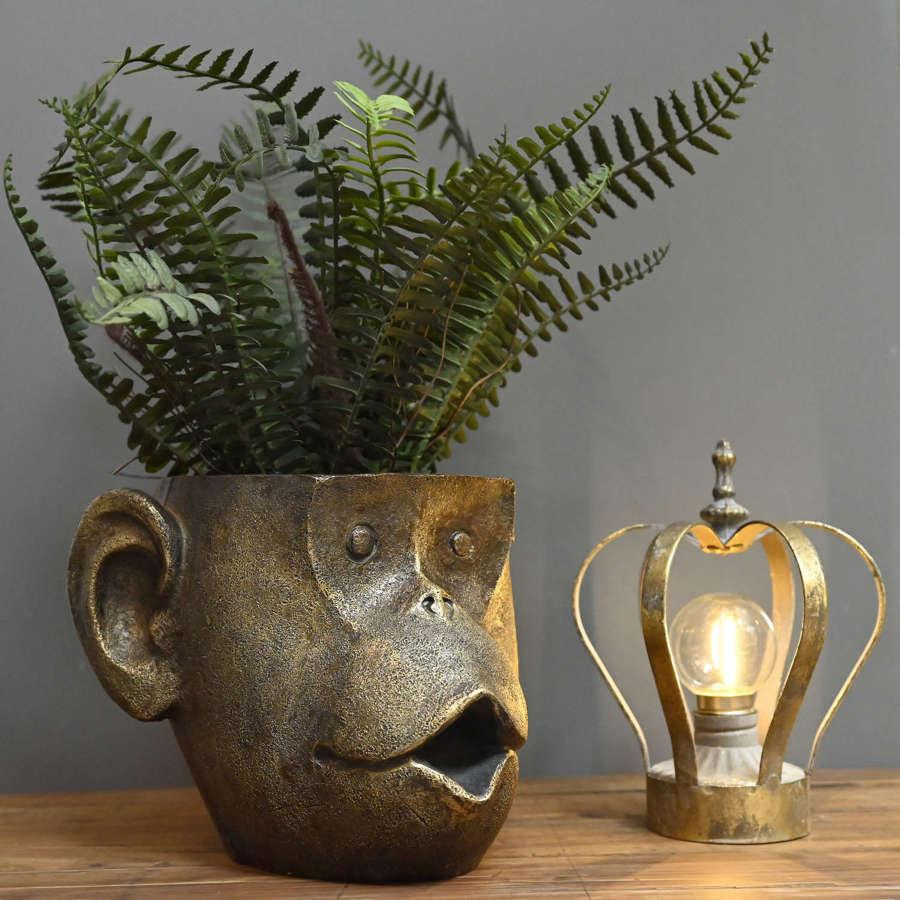 Monkey head planter pot