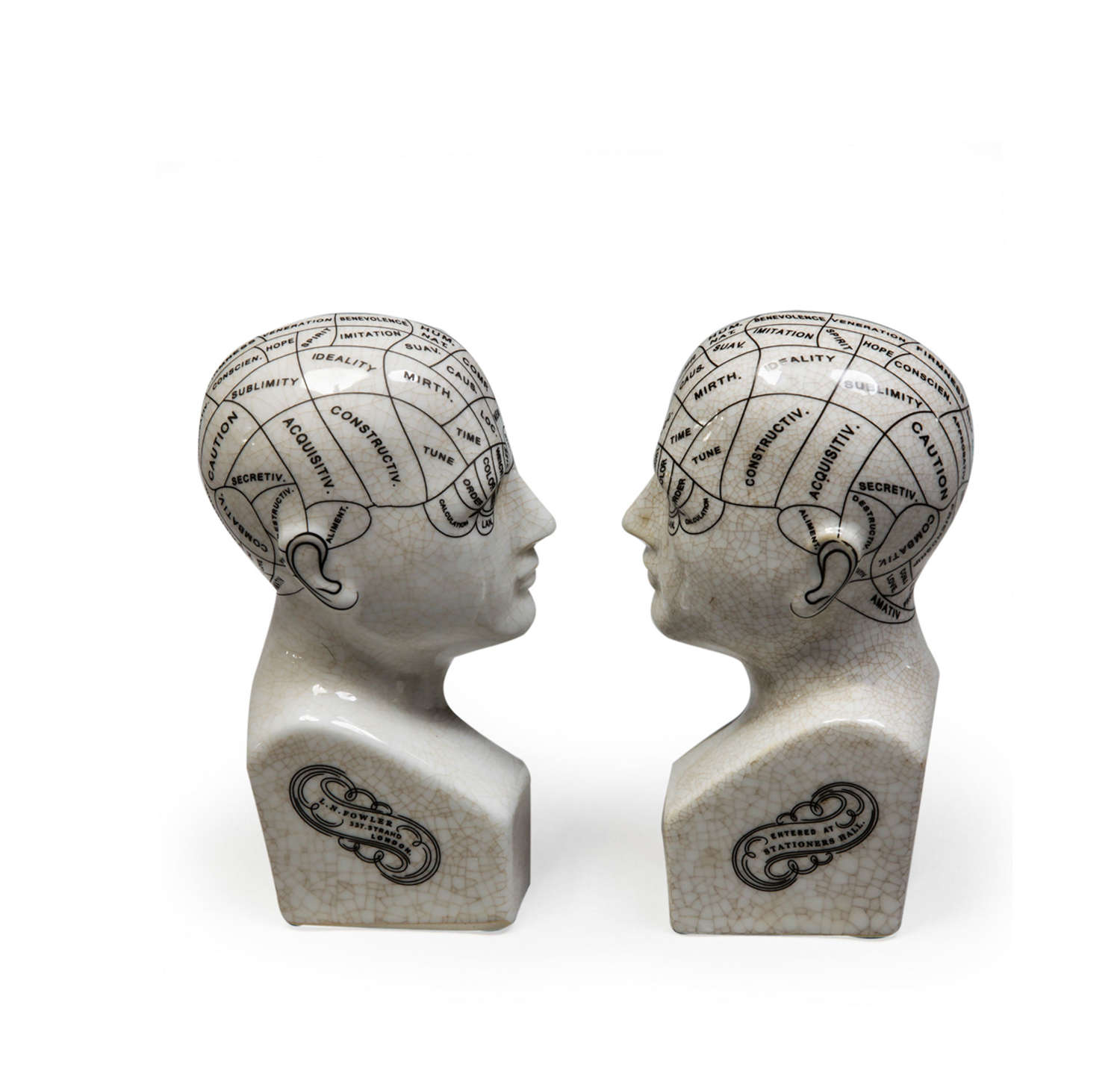 Anitque effect Phrenology Head bookends