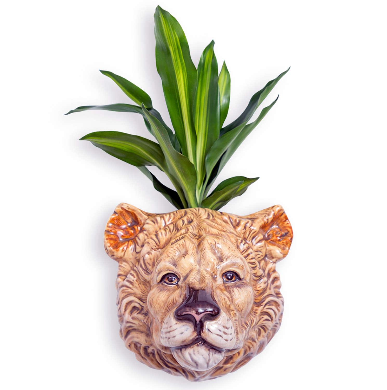 Ceramic Lioness head wall planter