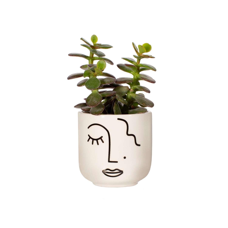 Abstract Face ceramic mini planter